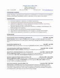 Examples Of Resume Summary Best Of Sample Resume For Director Of Alumni Relations Valid Resume Summary
