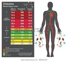 Normal Diabetes Reading Chart Diabetes Chart Symptoms High Blood Sugar Stock Vector