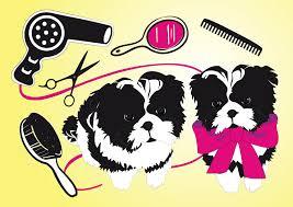 cute dogs beauty salon vector art