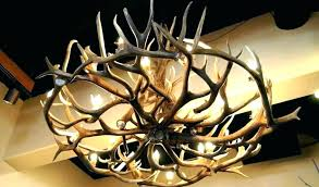 how to make a antler chandelier unique how to make antler chandelier deer white antler chandelier how to make a antler chandelier