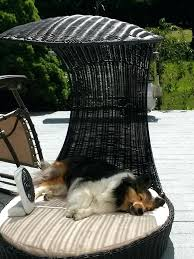 diy outdoor dog bed with canopy 7 best furniture images on diy outdoor dog bed