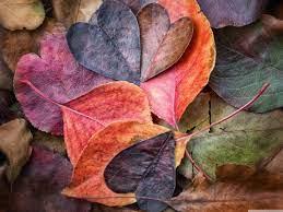 Autumn Love Wallpapers - Wallpaper Cave