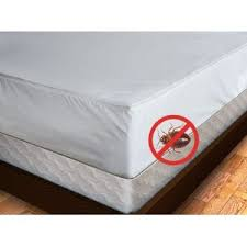 mattress protector bed bugs. Modren Protector Intended Mattress Protector Bed Bugs A