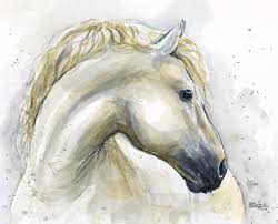stallion painting white horse watercolor by olga shvartsur