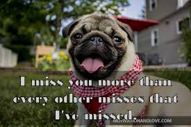 i miss you more than every other misses
