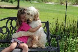Imagini pentru iubire neconditionata