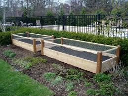 is pressure treated wood safe for raised vegetable garden beds