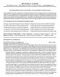 Sample Executive Summary For Resume Resume Executive Summary Example