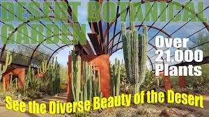 desert botanical garden virtual tour