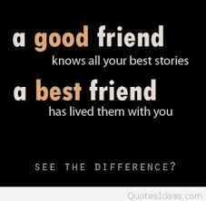 Funny Best Friend Quotes Extraordinary Funny Good Friends Vs Best Friends Quotes Picture