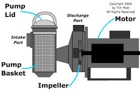pool pump motor diagram just another wiring diagram blog • pool pumps pool school by poolplaza pool supplies rh poolplaza com century pool pump motor wiring diagram ao smith pool pump motor parts diagram