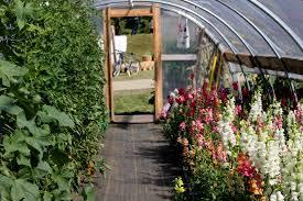 garden seed companies. Maine Seed Companies Garden