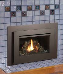 home gas heating gas inserts