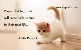 Cat Quotes Cat Quote Cat Quotations Funny Cat Quotes Cool Cat Quotes