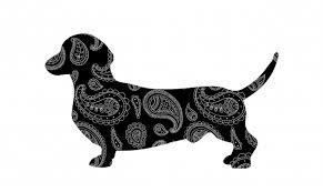 Jezevčík Pes Paisley Silhouette Stock Fotka Zdarma Public Domain
