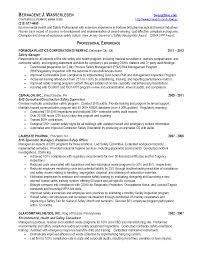 Download Certified Safety Engineer Sample Resume