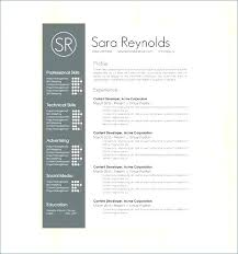 Resume Layouts Amazing Resume Templates Word Format Perfect Professional Resume Template