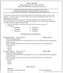 Resume Examples Microsoft Word Standard Resume Template Word Sample