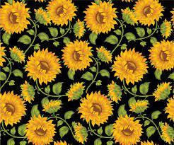 Laptop Wallpaper Tumblr Sunflower