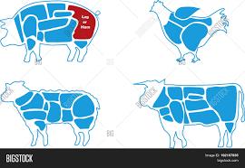 Beef Pork Lamb Vector Photo Free Trial Bigstock