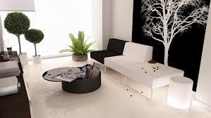 White Living Room Decoration Black White Interiors