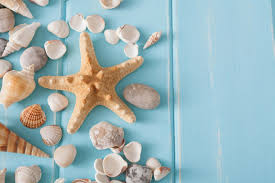 17 ideas of beach wall decor and other