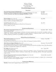Slp Resume Examples Trendy Speech Language Pathologist Resume Unique Speech Language Pathology Resume