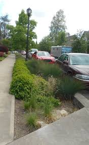 Parking Lot Stormwater Design Stormwater Quality Design Anderson Associates