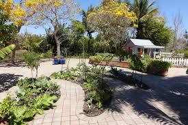 file vegetable gardening naples botanical garden naples florida dsc09623 jpg