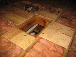 Plywood Around Attic Access Hole ...