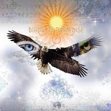 Nova Luz - Bird Tribe | Shazam