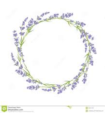 Illustration Lavender Bundles With Ribbon French Google Search