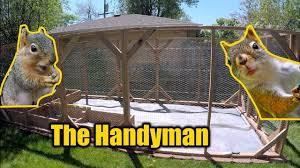 squirrel rabbit proof garden enclosure the handyman