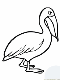 Small Picture Walking pelican Coloring Page Free Pelican Coloring Pages