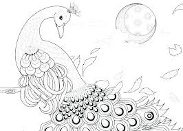 Peacock Coloring Book Pin By On Birds Peacocks Coloring Books And