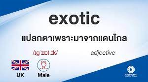 exotic ออกเสียงว่า แปลว่า อะไร แปลภาษาอังกฤษเป็นไทย By ENCONCEPT Dictionary  - YouTube