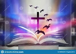 46,951 Christian Hope Photos - Free & Royalty-Free Stock Photos ...