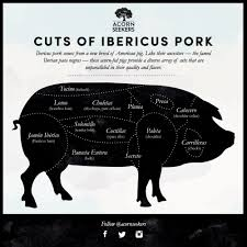Lean Cuts Of Pork Chart Ibericus Pork Is Here At Last Which Cut Will You Try First