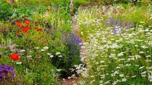 40 English Garden Design Ideas How To Make An English Garden Landscape Delectable Wildflower Garden Design Gallery