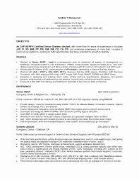 Sap Crm Functional Consultant Resume Sample Lovely Sap Bi Sample