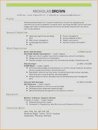 Resume Template Word Lovely Functional Resume Template Word Pour