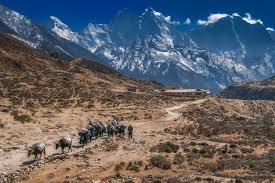 a journey to mount everest base the planet d be transported to mount everest base camp