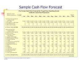 Pro Forma Cash Flow Projections Understanding Your Financial Requirements Ppt Video Online