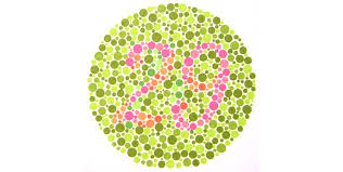 One Page From The Well Known Ishihara Color Vision Test Book