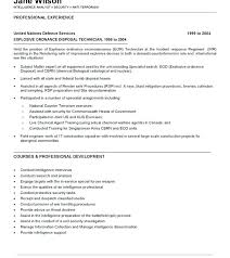 Sample Resume Inservice Training Best of Promisedesign The Resume Best Ideas