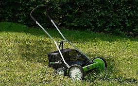 the green works greenworks 25052 16 inch 5 blade push reel lawn mower with grass
