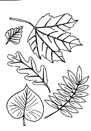 Printable leaf coloring pages for kids. Coloring Autumn Leaves Pages Lovely Free Leaf Page Download Clip Art Queens Svg Vector Image Don Grierson