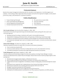 Project Manager Resume Summary Examples fresh it project manager resume summary example prepossessing 4