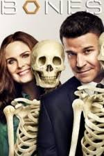sex tv shows primewire proxy 1channel letmewatchthis watch watch bones