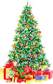 Highquality Pictures For Christmas Trees Free Stock Photos In Image